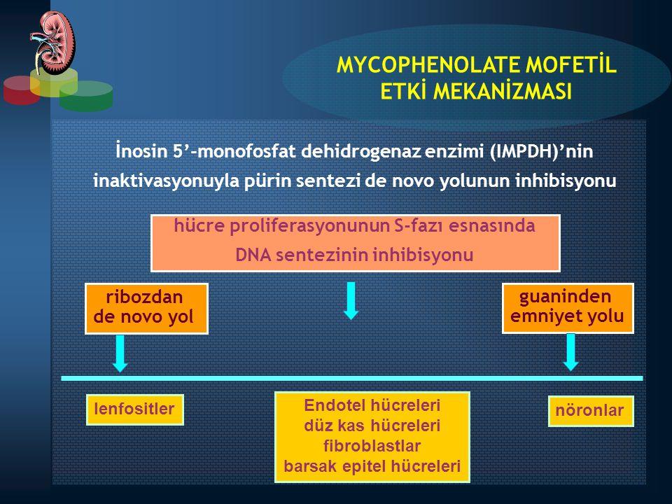 MYCOPHENOLATE MOFETİL ETKİ MEKANİZMASI