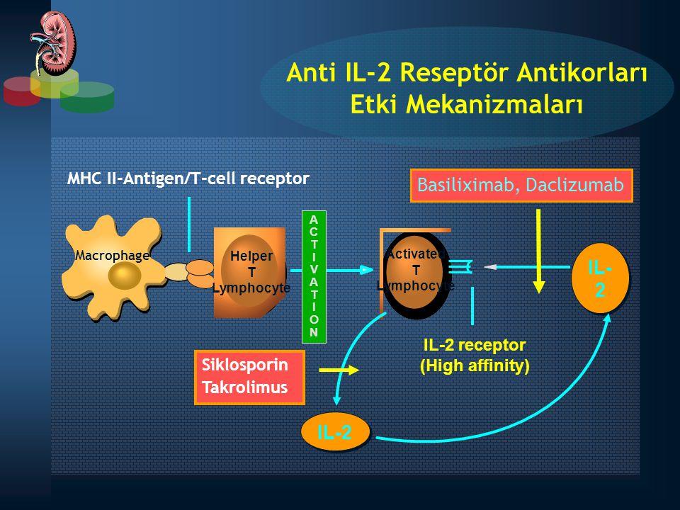 Anti IL-2 Reseptör Antikorları