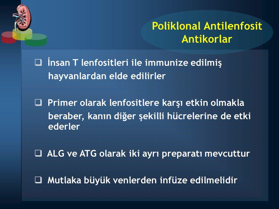 Poliklonal Antilenfosit