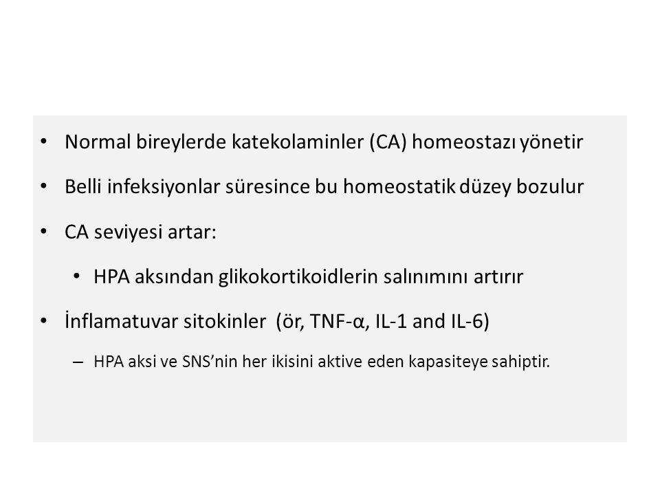 Normal bireylerde katekolaminler (CA) homeostazı yönetir
