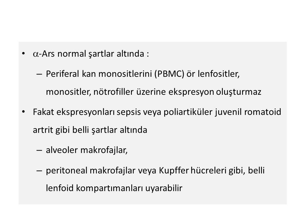 -Ars normal şartlar altında :