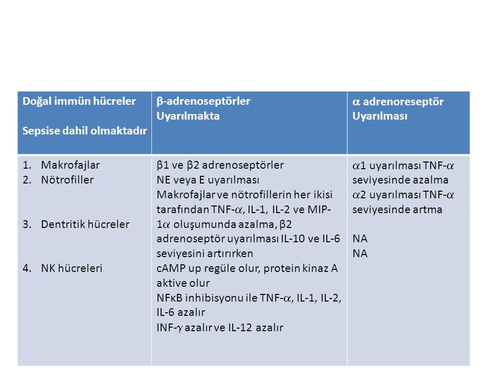 Doğal immün hücreler Sepsise dahil olmaktadır. β-adrenoseptörler. Uyarılmakta.  adrenoreseptör Uyarılması.
