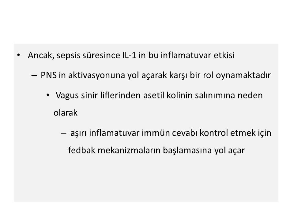 Ancak, sepsis süresince IL-1 in bu inflamatuvar etkisi