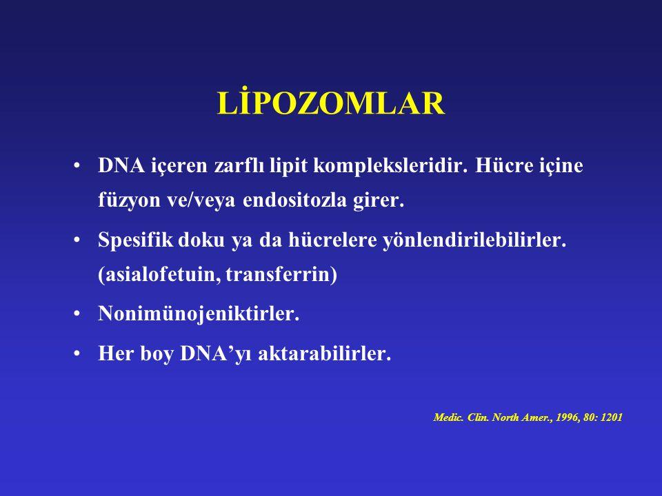 LİPOZOMLAR DNA içeren zarflı lipit kompleksleridir. Hücre içine füzyon ve/veya endositozla girer.