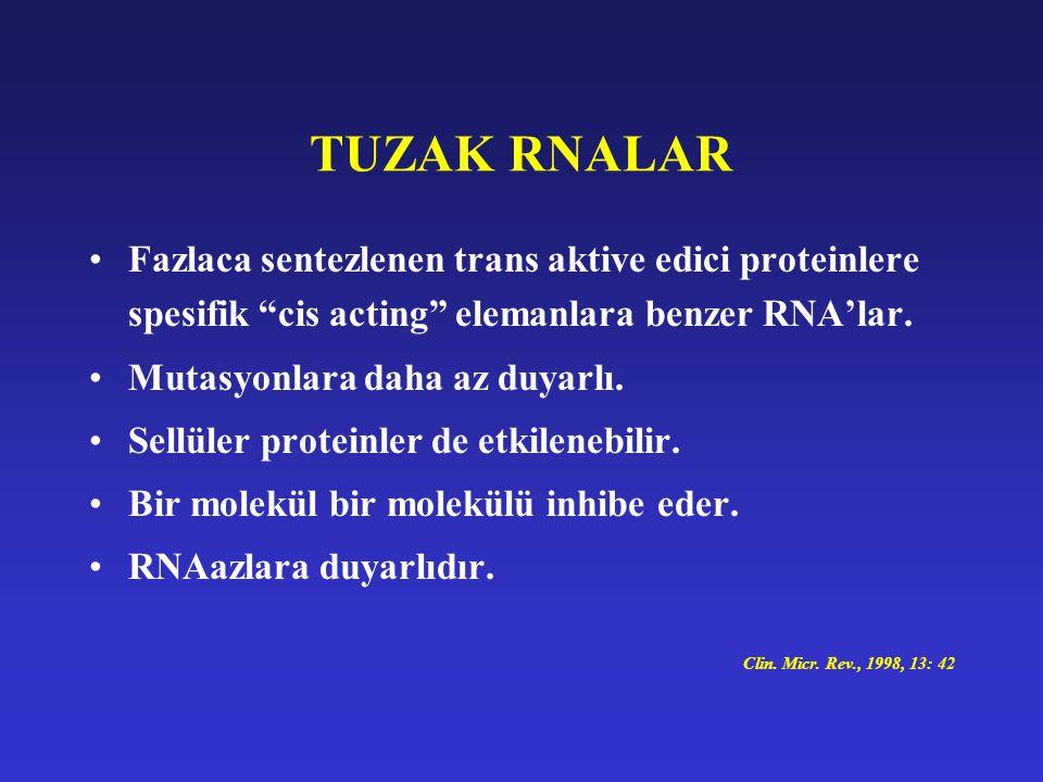 TUZAK RNALAR Fazlaca sentezlenen trans aktive edici proteinlere spesifik cis acting elemanlara benzer RNA'lar.