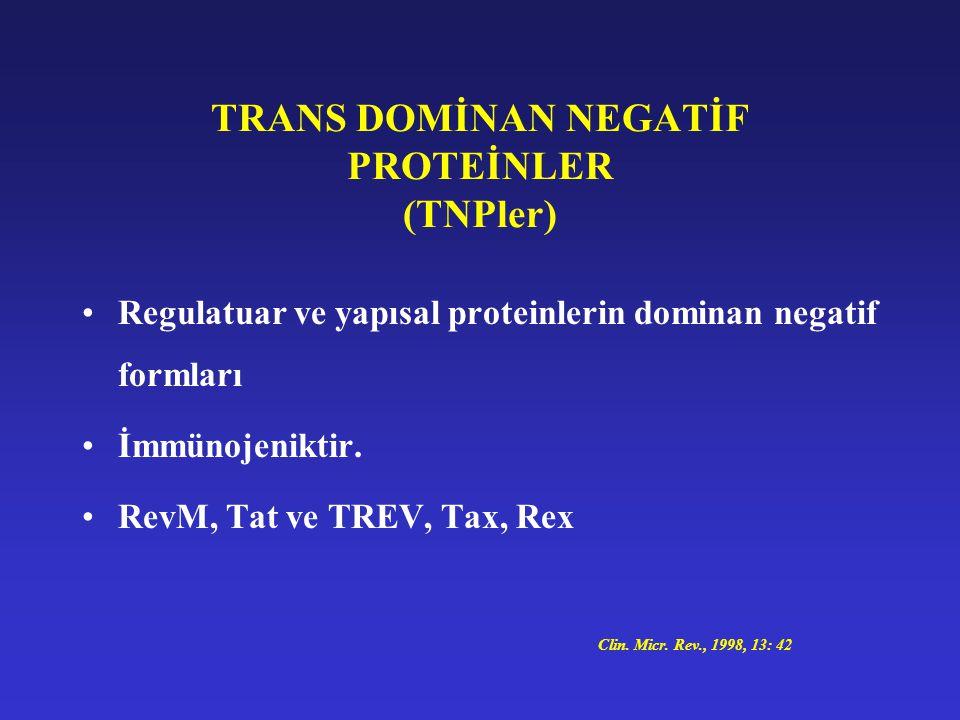 TRANS DOMİNAN NEGATİF PROTEİNLER (TNPler)