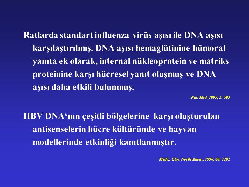 Ratlarda standart influenza virüs aşısı ile DNA aşısı karşılaştırılmış