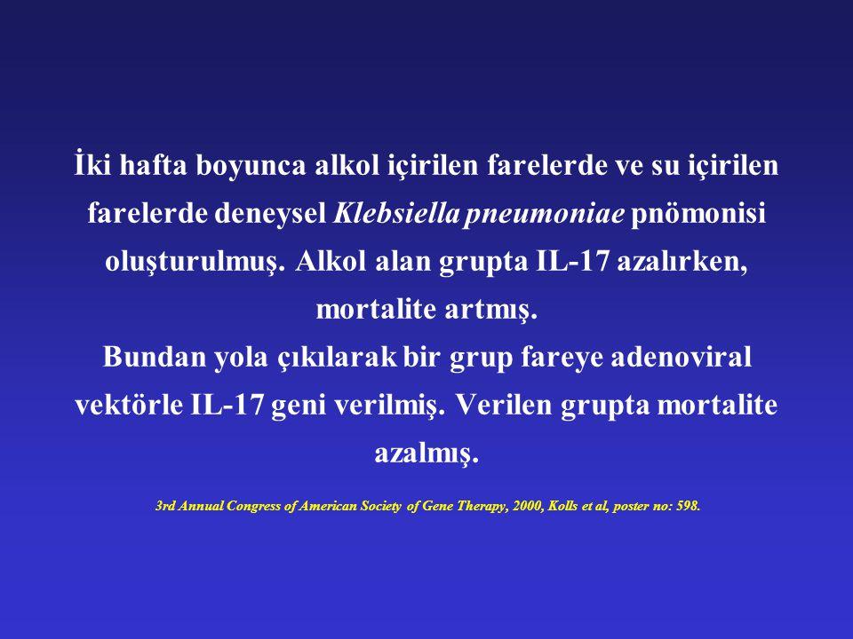 İki hafta boyunca alkol içirilen farelerde ve su içirilen farelerde deneysel Klebsiella pneumoniae pnömonisi oluşturulmuş.