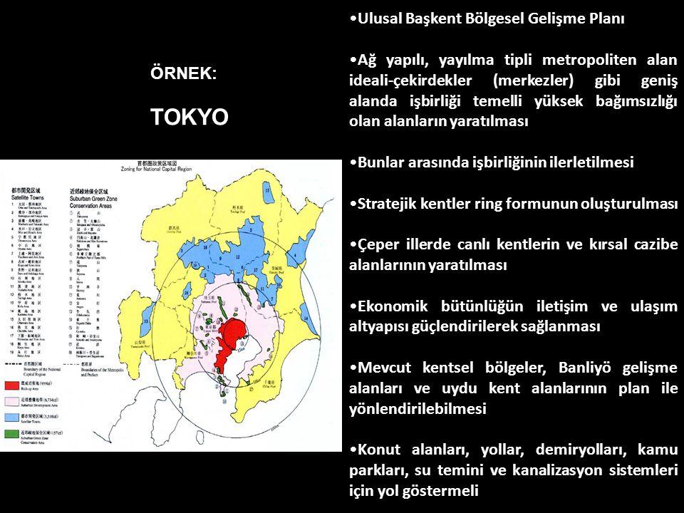 TOKYO Ulusal Başkent Bölgesel Gelişme Planı