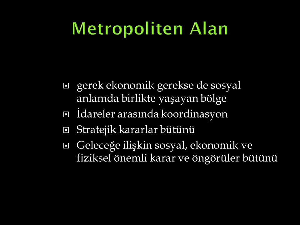 Metropoliten Alan gerek ekonomik gerekse de sosyal anlamda birlikte yaşayan bölge. İdareler arasında koordinasyon.