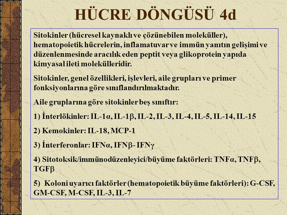 HÜCRE DÖNGÜSÜ 4d