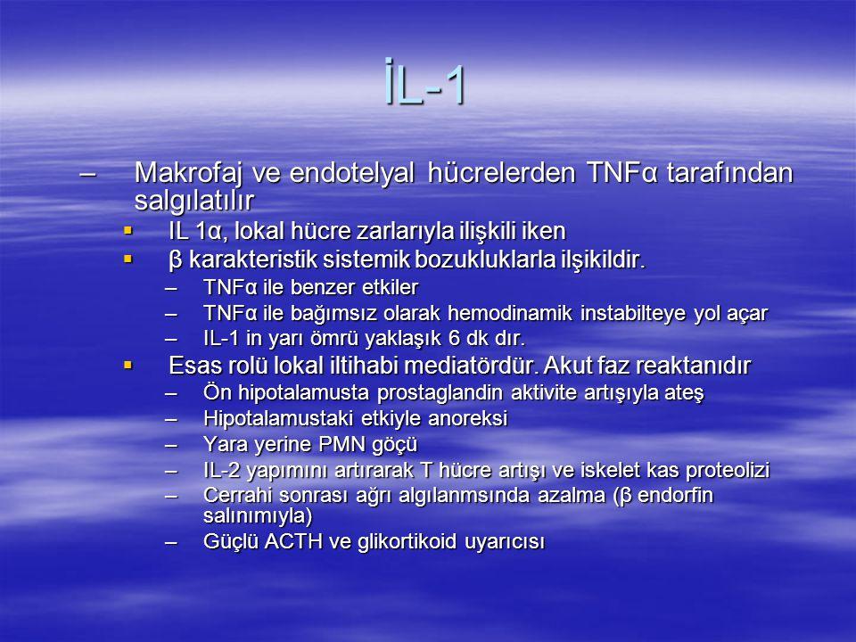 İL-1 Makrofaj ve endotelyal hücrelerden TNFα tarafından salgılatılır