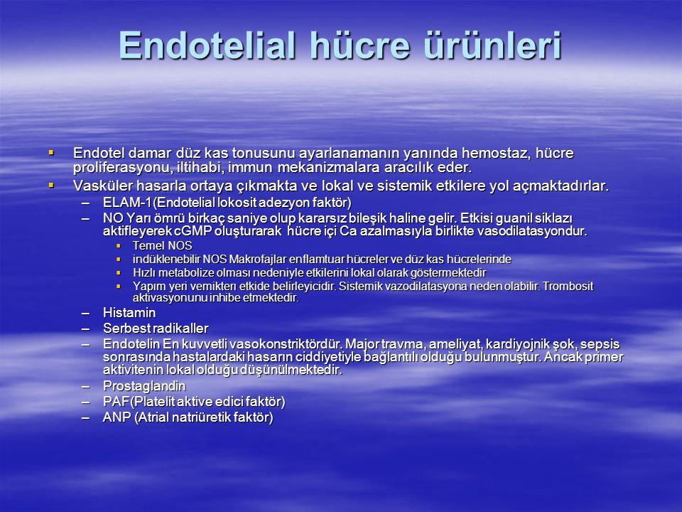 Endotelial hücre ürünleri