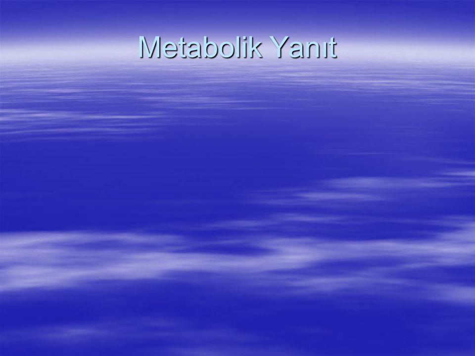 Metabolik Yanıt