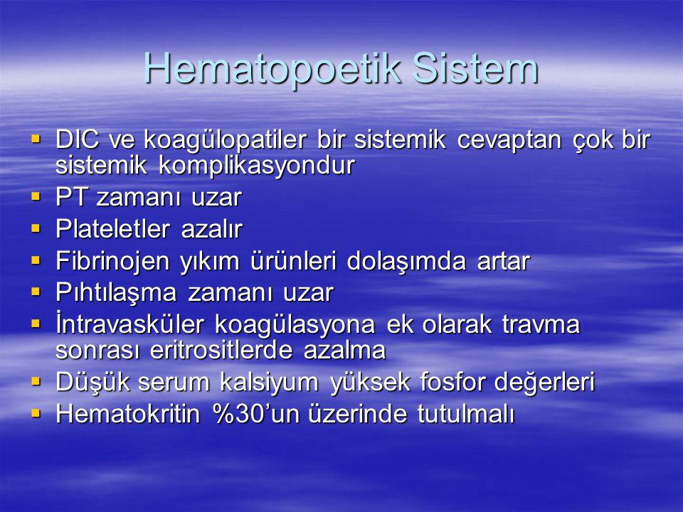 Hematopoetik Sistem DIC ve koagülopatiler bir sistemik cevaptan çok bir sistemik komplikasyondur. PT zamanı uzar.