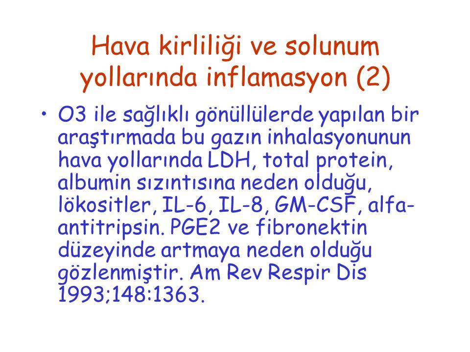 Hava kirliliği ve solunum yollarında inflamasyon (2)