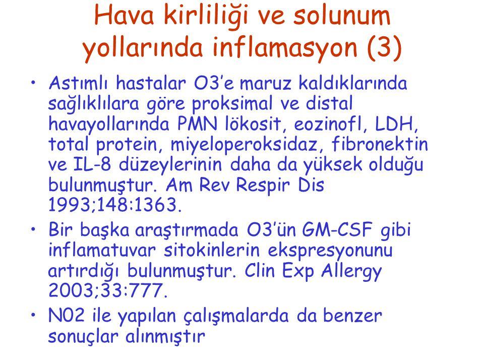Hava kirliliği ve solunum yollarında inflamasyon (3)