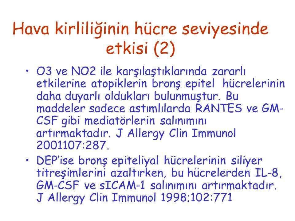 Hava kirliliğinin hücre seviyesinde etkisi (2)