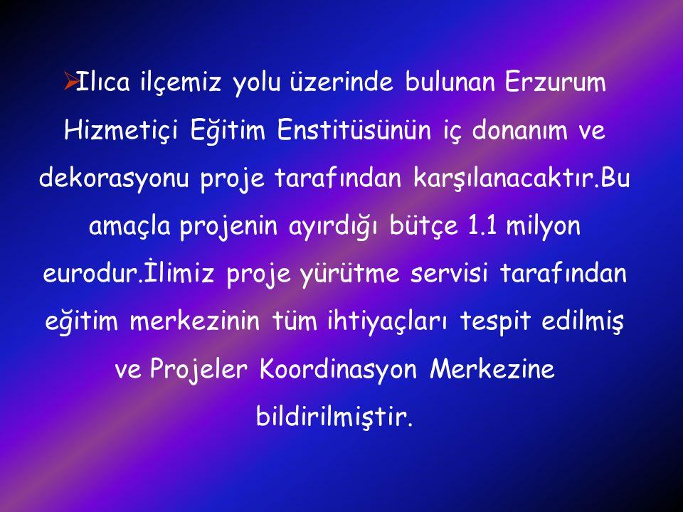 Ilıca ilçemiz yolu üzerinde bulunan Erzurum Hizmetiçi Eğitim Enstitüsünün iç donanım ve dekorasyonu proje tarafından karşılanacaktır.Bu amaçla projenin ayırdığı bütçe 1.1 milyon eurodur.İlimiz proje yürütme servisi tarafından eğitim merkezinin tüm ihtiyaçları tespit edilmiş ve Projeler Koordinasyon Merkezine bildirilmiştir.