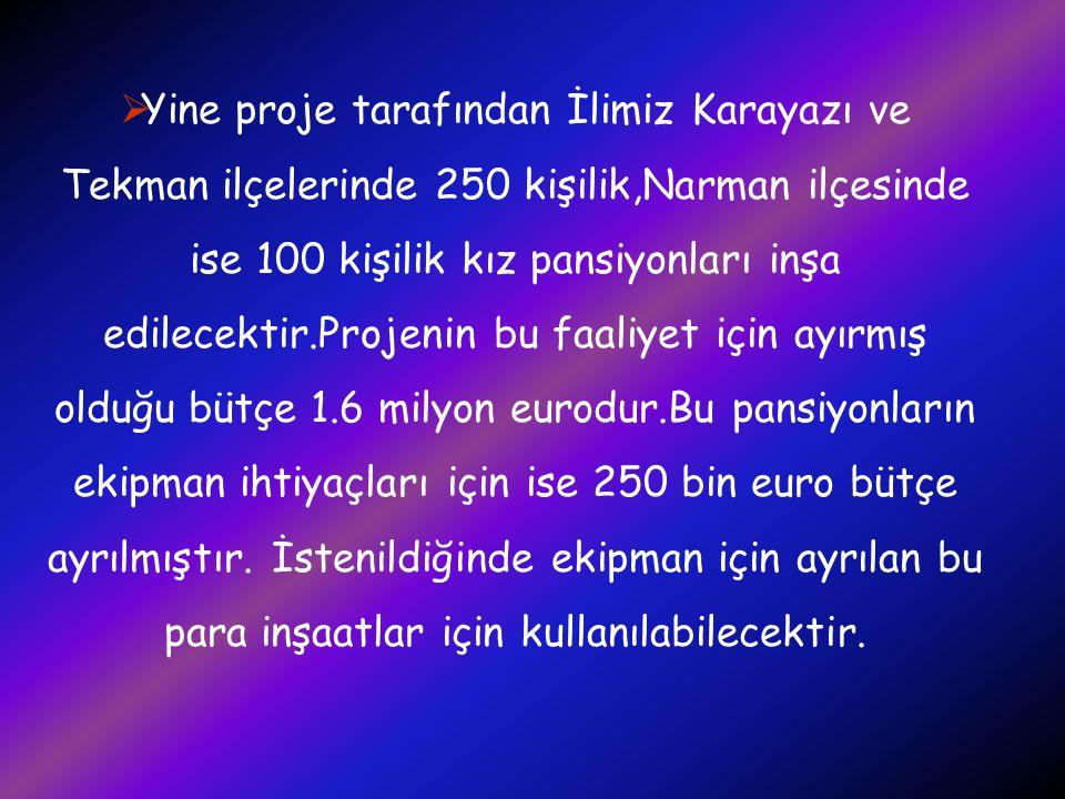 Yine proje tarafından İlimiz Karayazı ve Tekman ilçelerinde 250 kişilik,Narman ilçesinde ise 100 kişilik kız pansiyonları inşa edilecektir.Projenin bu faaliyet için ayırmış olduğu bütçe 1.6 milyon eurodur.Bu pansiyonların ekipman ihtiyaçları için ise 250 bin euro bütçe ayrılmıştır.