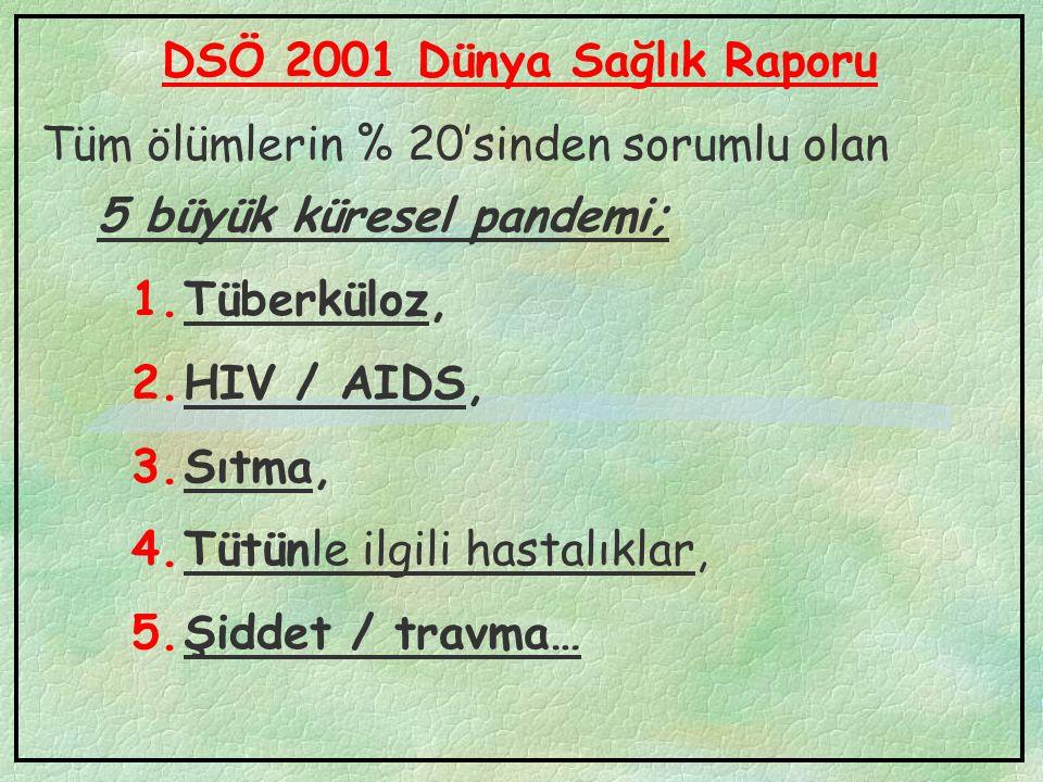 DSÖ 2001 Dünya Sağlık Raporu