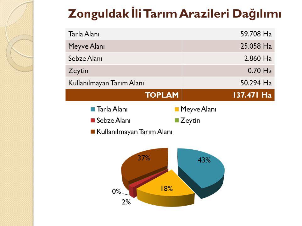 Zonguldak İli Tarım Arazileri Dağılımı