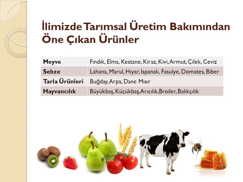 İlimizde Tarımsal Üretim Bakımından Öne Çıkan Ürünler