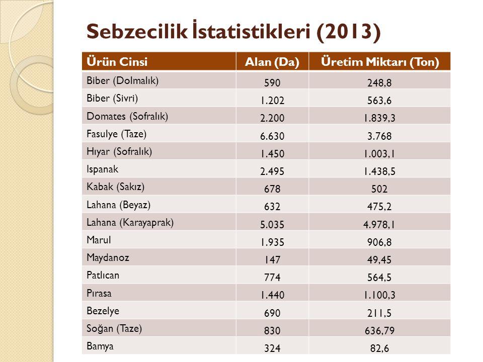 Sebzecilik İstatistikleri (2013)
