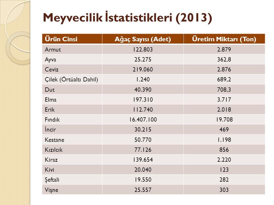 Meyvecilik İstatistikleri (2013)