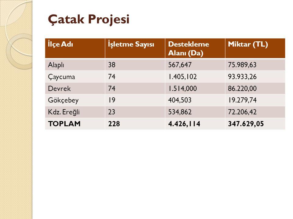 Çatak Projesi İlçe Adı İşletme Sayısı Destekleme Alanı (Da)