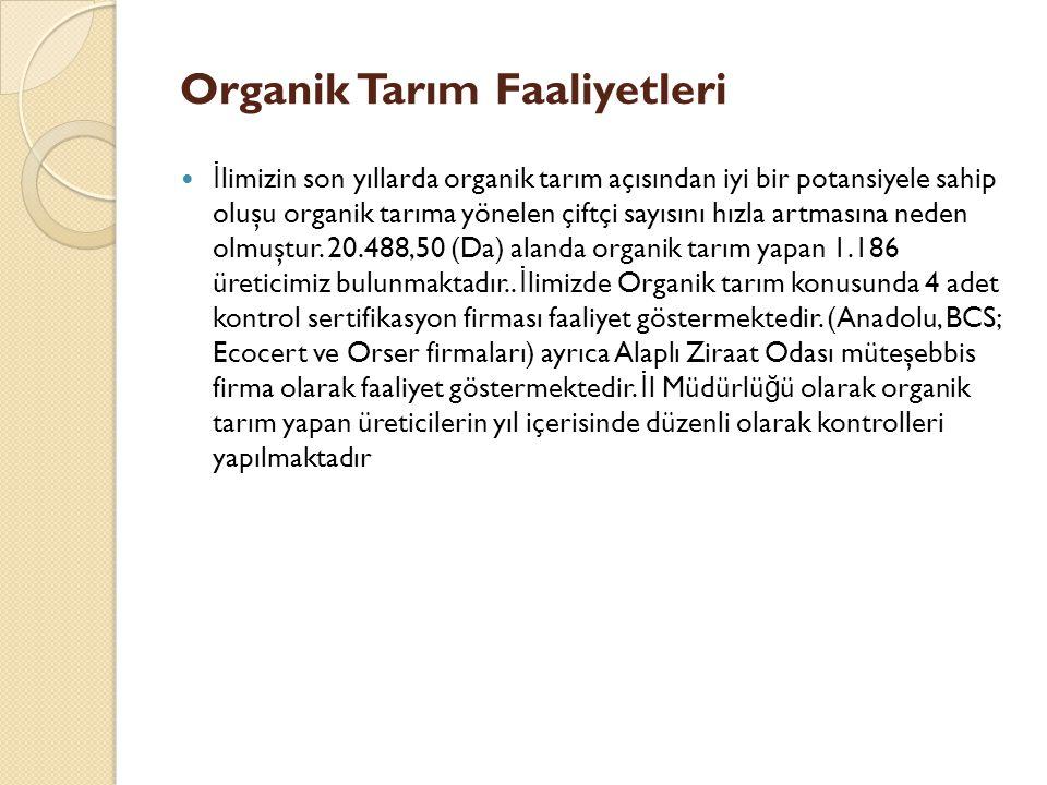 Organik Tarım Faaliyetleri