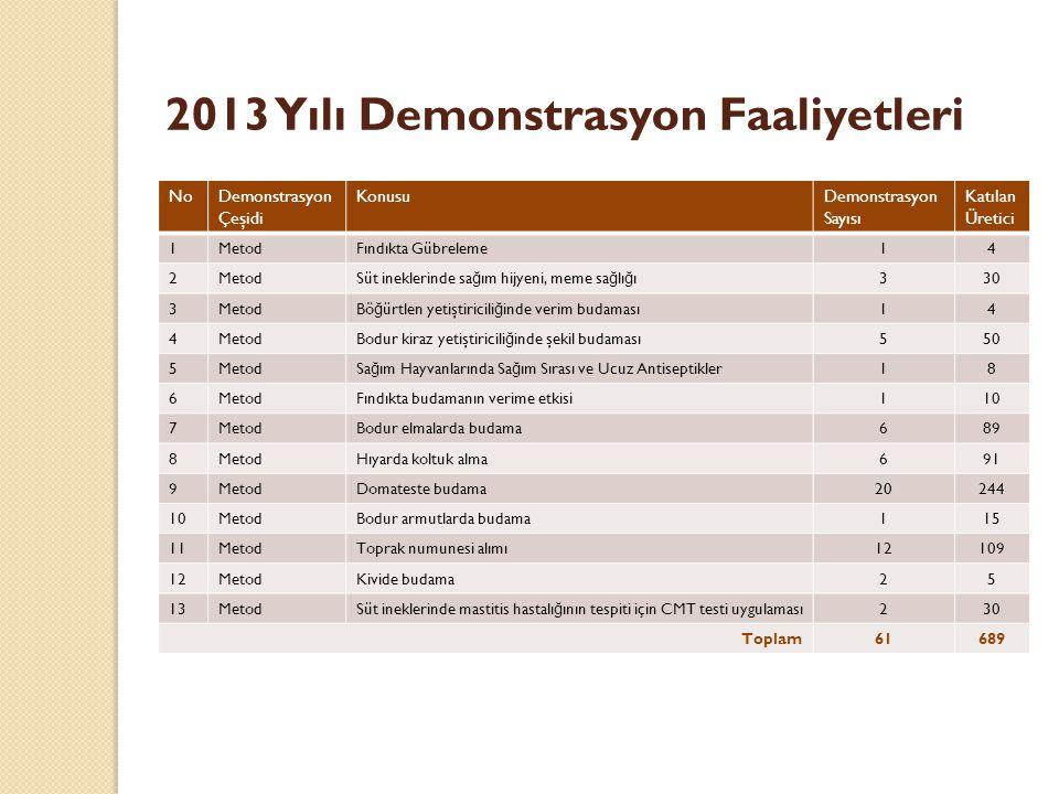 2013 Yılı Demonstrasyon Faaliyetleri