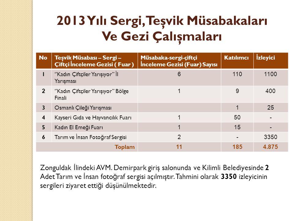 2013 Yılı Sergi, Teşvik Müsabakaları Ve Gezi Çalışmaları