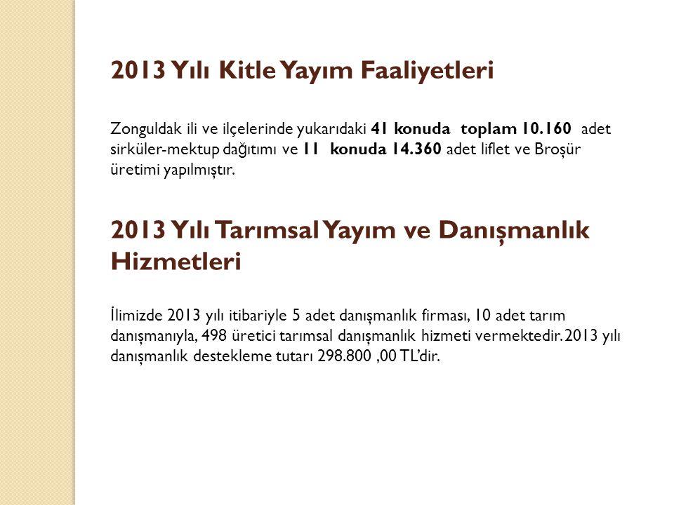 2013 Yılı Kitle Yayım Faaliyetleri