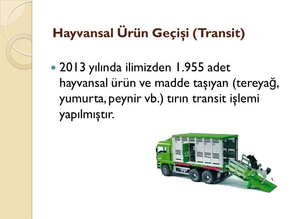 Hayvansal Ürün Geçişi (Transit)