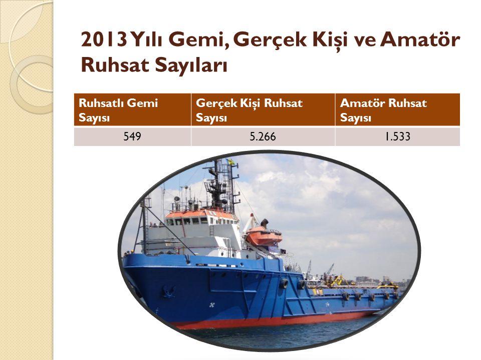2013 Yılı Gemi, Gerçek Kişi ve Amatör Ruhsat Sayıları