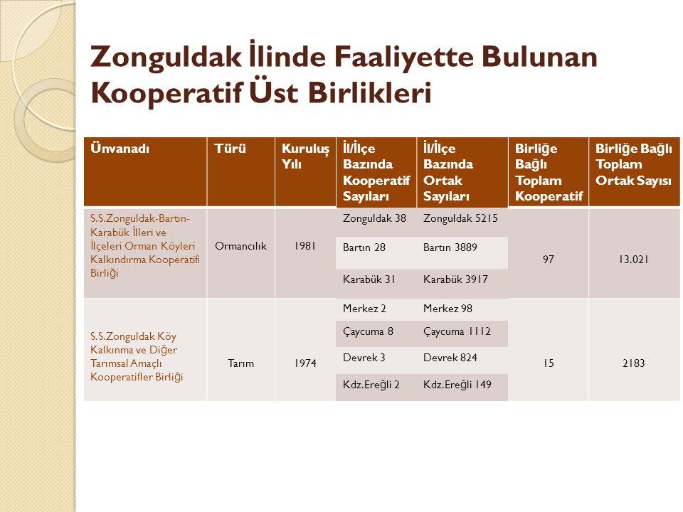 Zonguldak İlinde Faaliyette Bulunan Kooperatif Üst Birlikleri