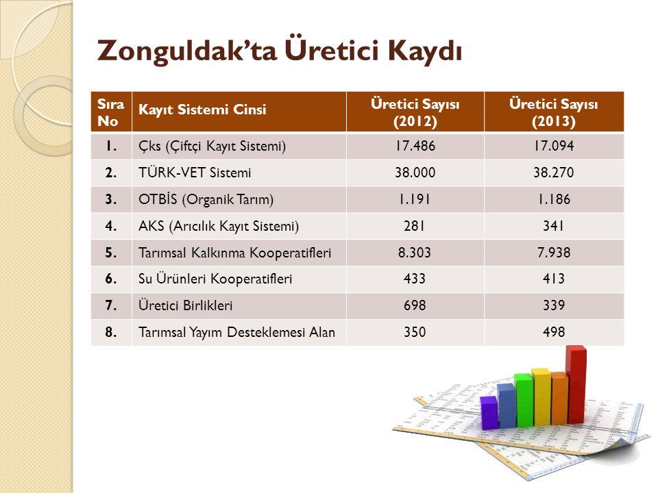 Zonguldak'ta Üretici Kaydı