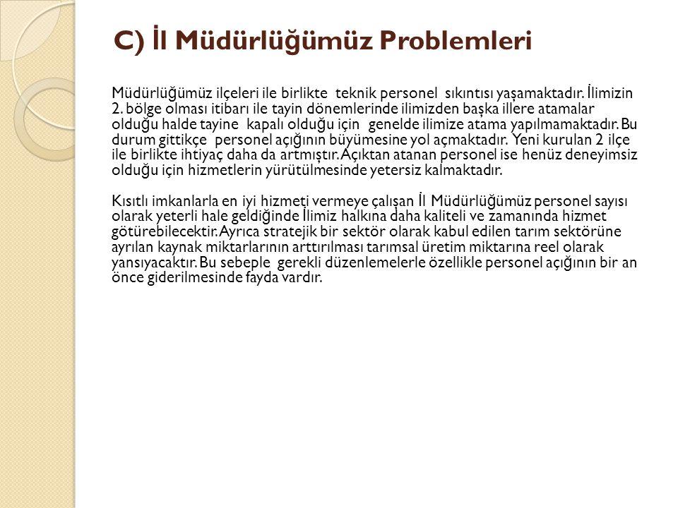 C) İl Müdürlüğümüz Problemleri
