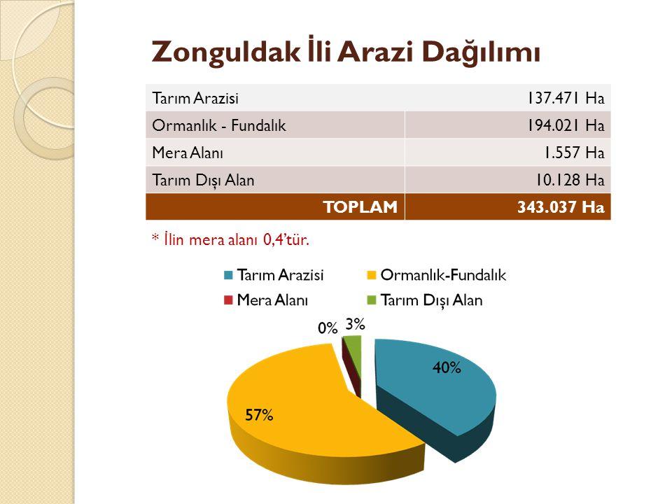 Zonguldak İli Arazi Dağılımı