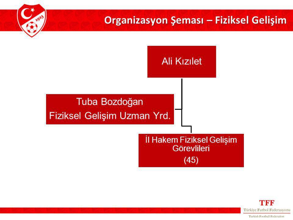 Organizasyon Şeması – Fiziksel Gelişim