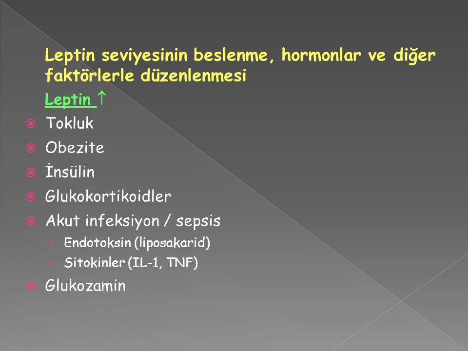Leptin seviyesinin beslenme, hormonlar ve diğer faktörlerle düzenlenmesi