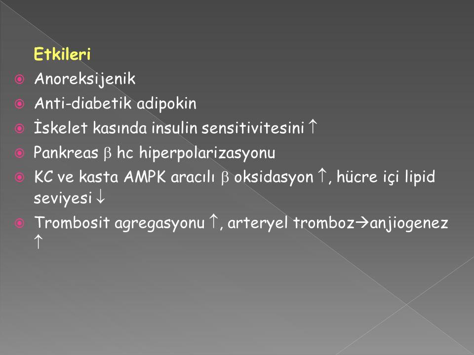 Etkileri Anoreksijenik Anti-diabetik adipokin