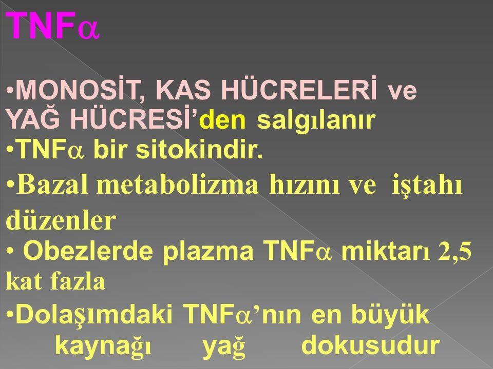 TNFa Bazal metabolizma hızını ve iştahı düzenler