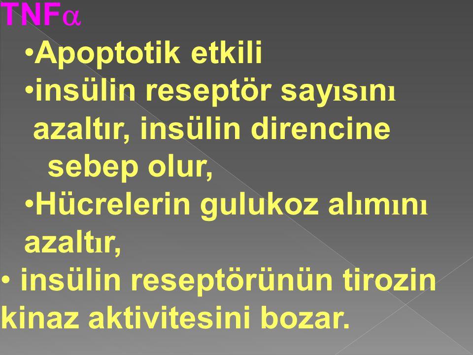 TNFa Apoptotik etkili. insülin reseptör sayısını. azaltır, insülin direncine sebep olur, Hücrelerin gulukoz alımını azaltır,
