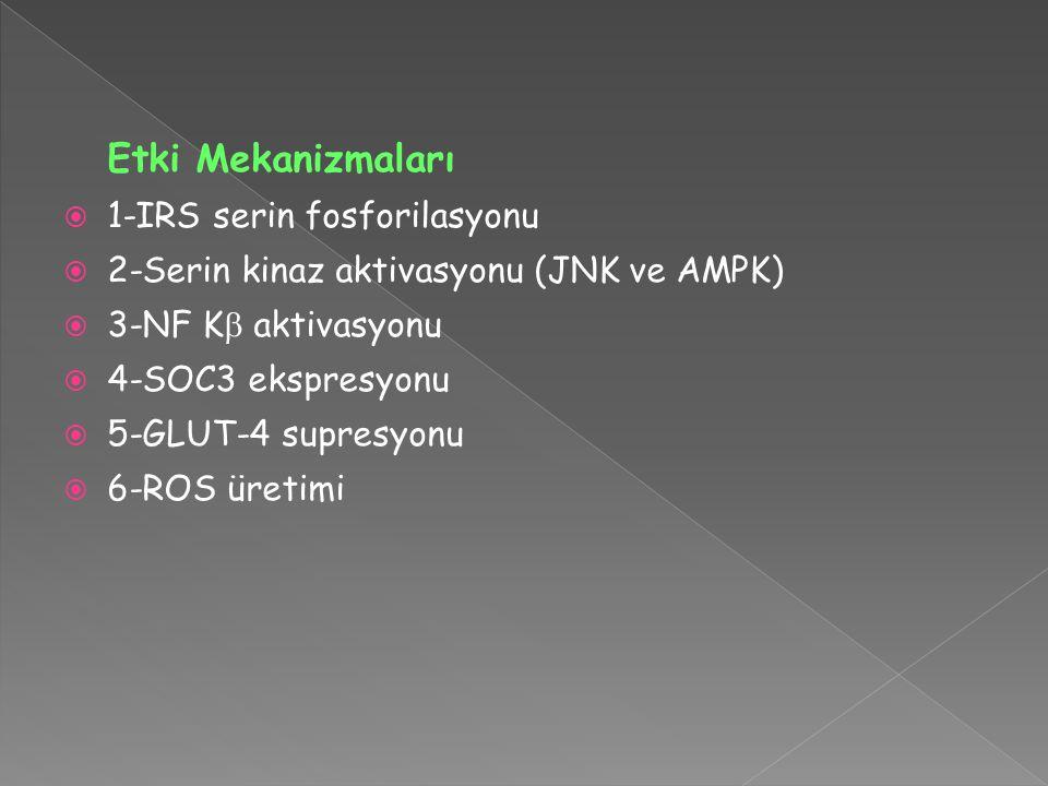 Etki Mekanizmaları 1-IRS serin fosforilasyonu