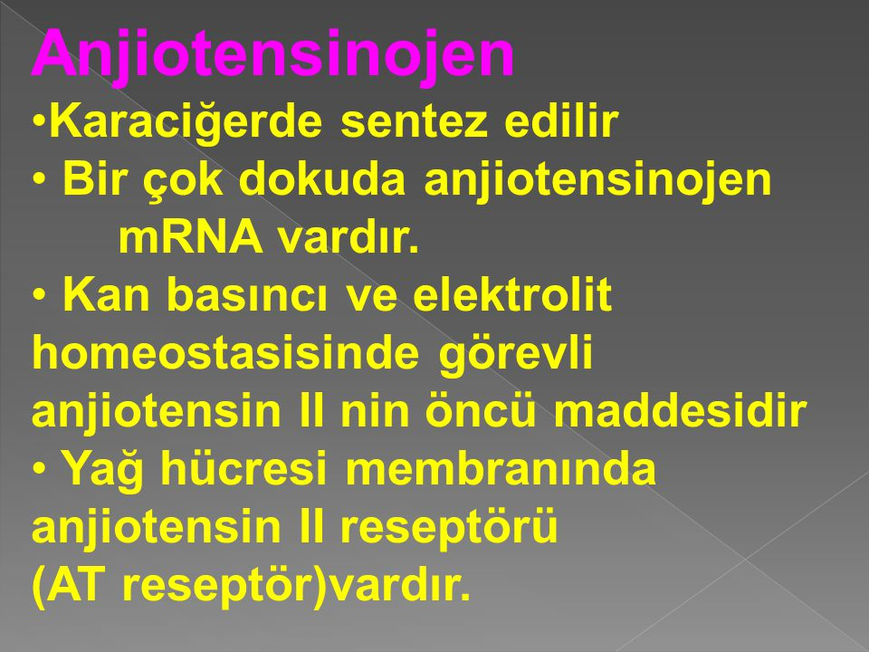 Anjiotensinojen Karaciğerde sentez edilir