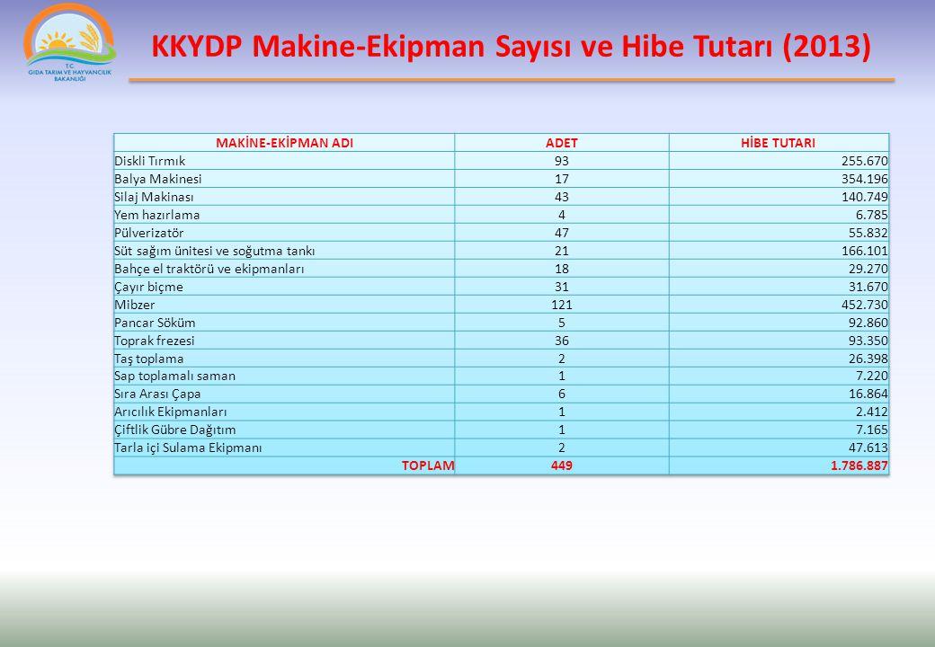 KKYDP Ekonomik ve Altyapı Yatırım Projeleri (2013)