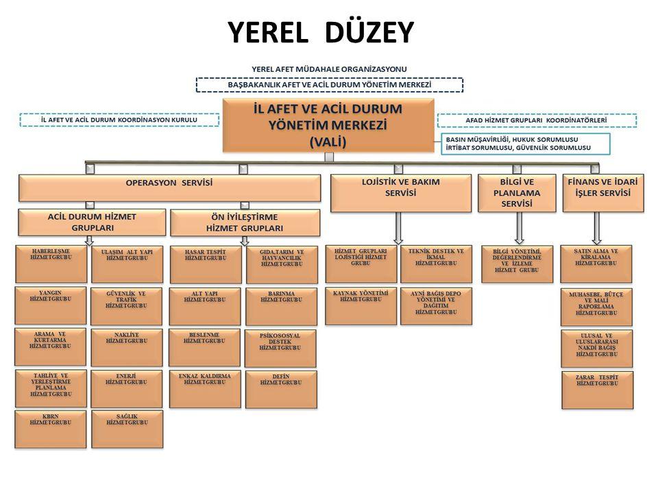YEREL DÜZEY