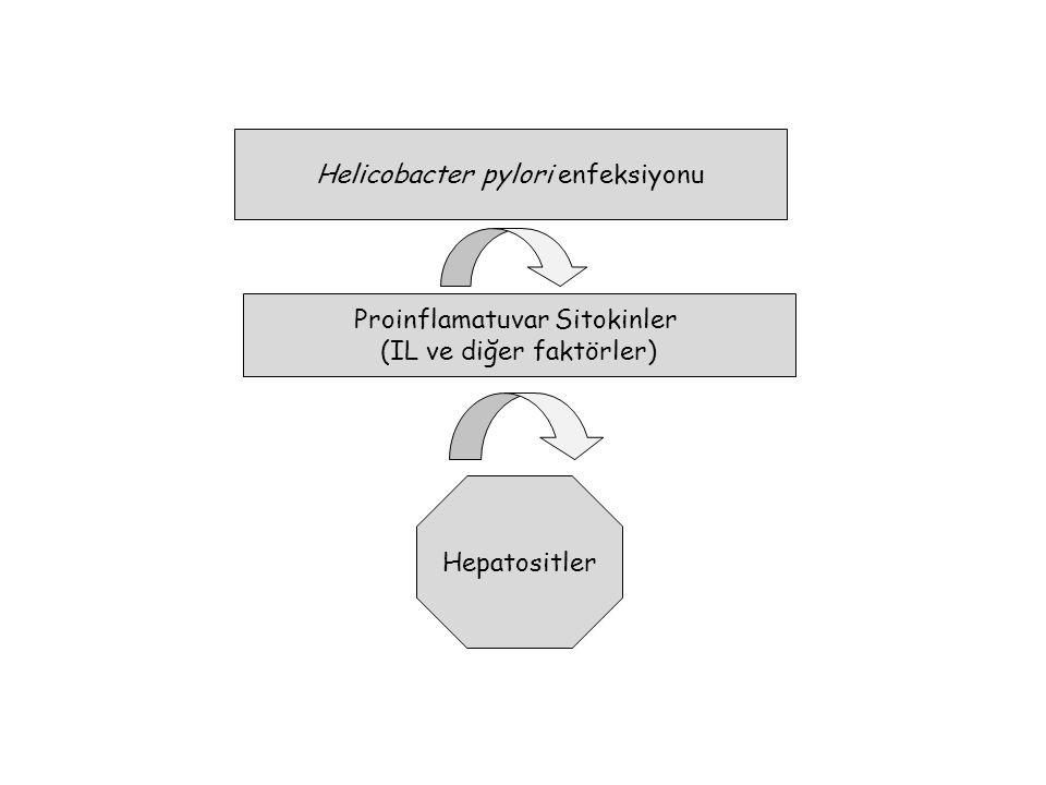 Helicobacter pylori enfeksiyonu